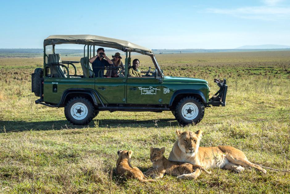 Safari bei Little Governors'