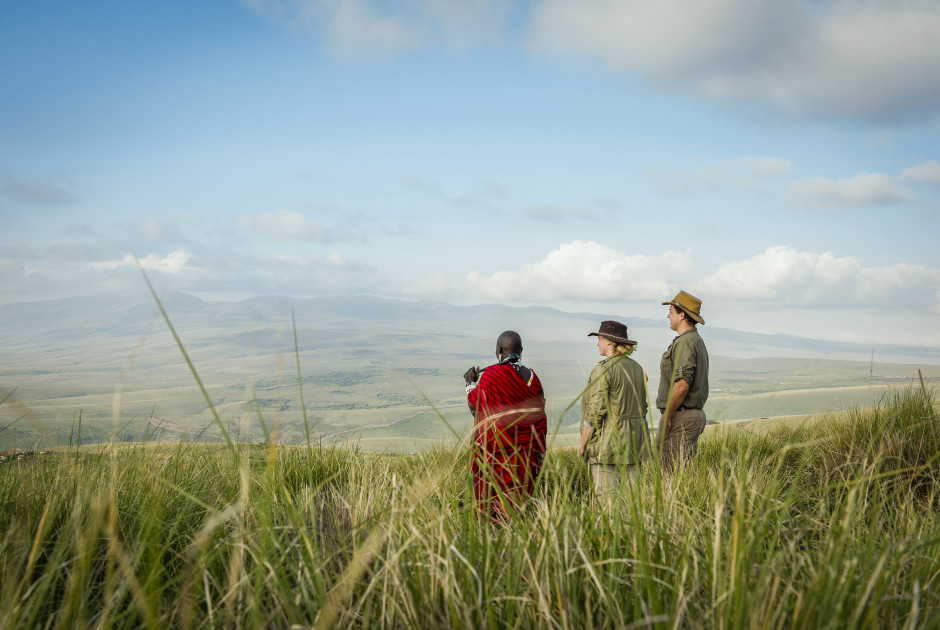 Walking Safari bei The Highlands