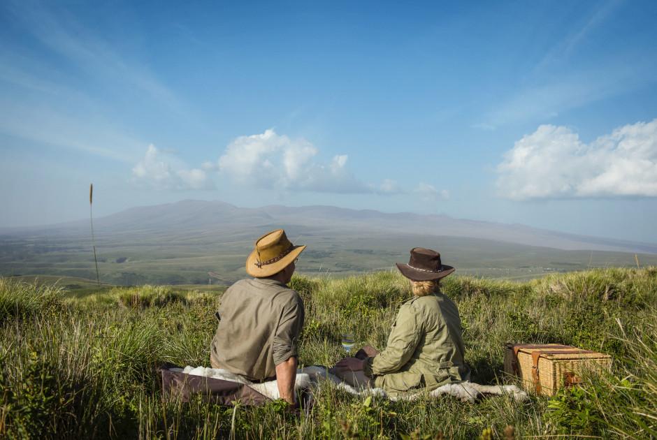 Picknick bei The Highlands