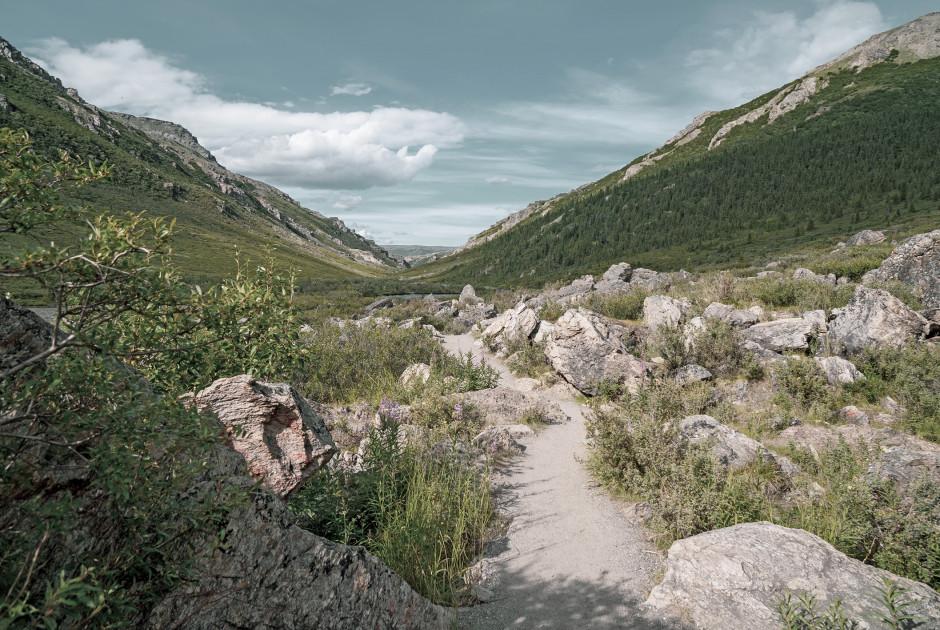Denali NP Trail