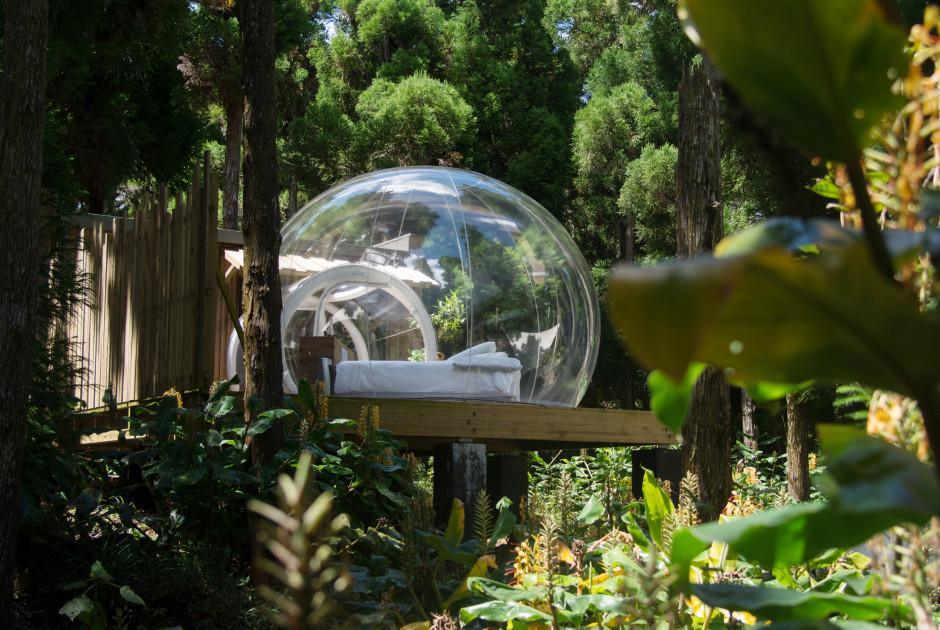 Bubble Tangue/Endormi