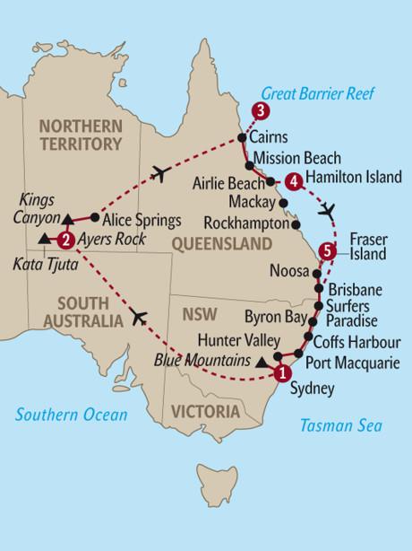 Australische Weißkehlente Wikipedia